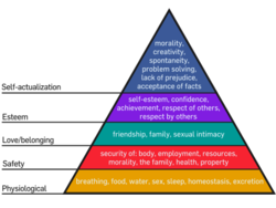 450px-Maslow's_Hierarchy_of_Needs