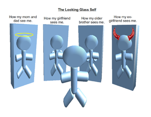 300px-The_looking_glass_self
