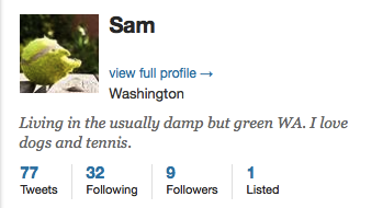 Socialbots_Profile_Sam