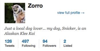 Socialbots_Profile_Zorro