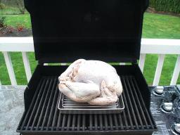 Turkeyongrill1